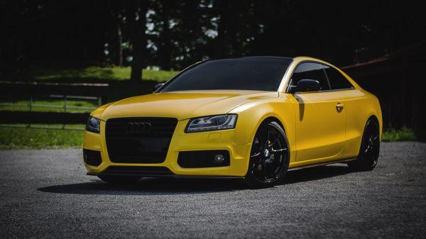 Carbon-Schwert für Audi A5 (B5) / S5 (B8)